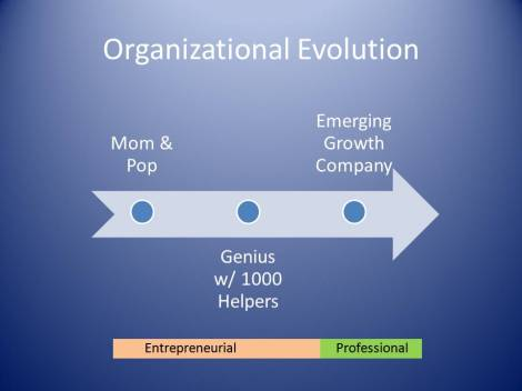 Organizational Evolution 2